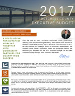 Cover image: 2017 Budget in Brief
