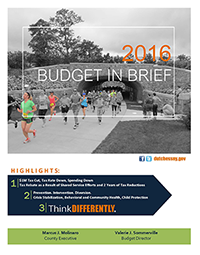 2016 Budget in Brief cover image