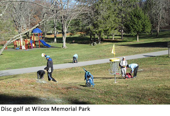 Disc golf at Wilcox Memorial Park