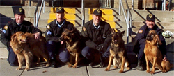 Sheriff's K-9 Unit