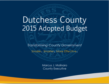 2015 Budget cover page