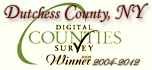 Digital Counties Award Winner image