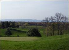 Dinsmore Golf Course