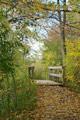 (Click to expand...) Bowdoin Park - Poughkeepsie, NY