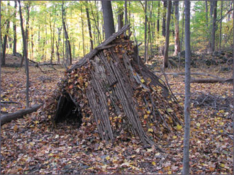 Survival camp image