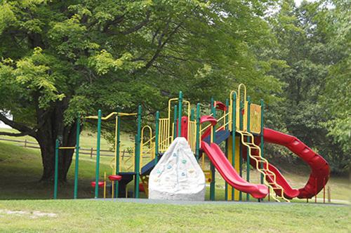 Wilcox Playground image