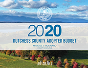 2020 Adopted Budget Icon