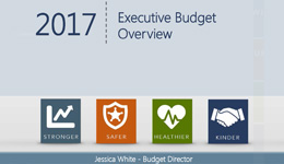 2017 Executive Budget Overview cover