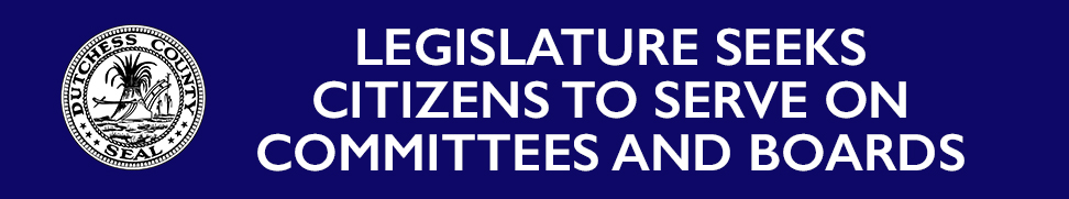 Legislature seeks citizens to serve on Committees and Boards