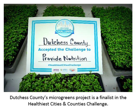 Microgreens project