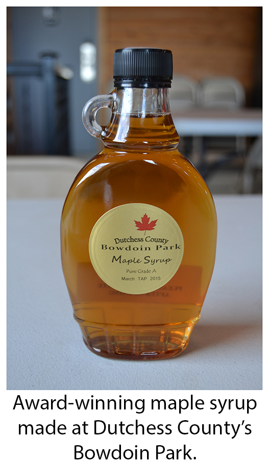 Bottle of award winning maple syrup made at Bowdoin Park