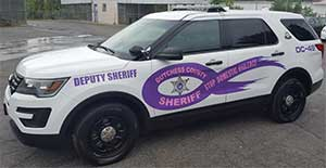 Stop domestic violence patrol car